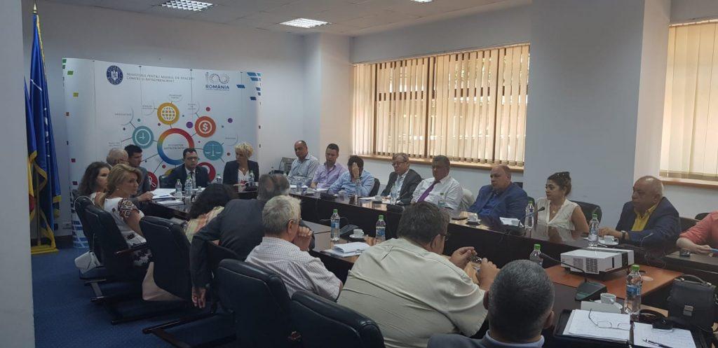 Ministrul pentru Mediul de Afaceri și-a exprimat acordul azi pentru a crea Grupul de Lucru pentru Economia Viitorului la propunerea INACO